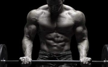 creatina dezvoltare masa musculara