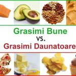 grasimi saturate vs grasimi nesaturate
