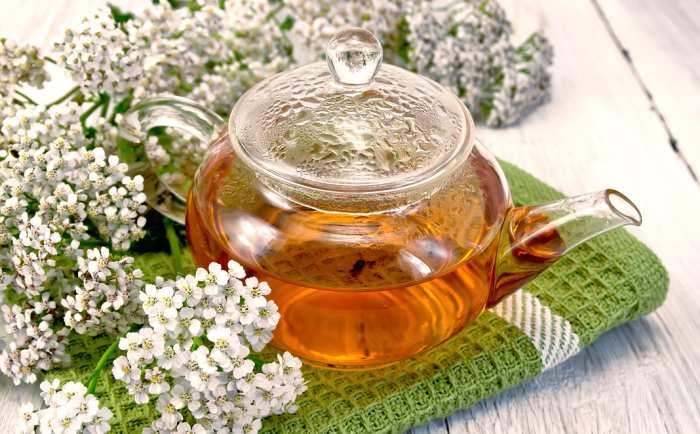 ceaiul de slăbire superior cumpărați tapeworm să piardă în greutate