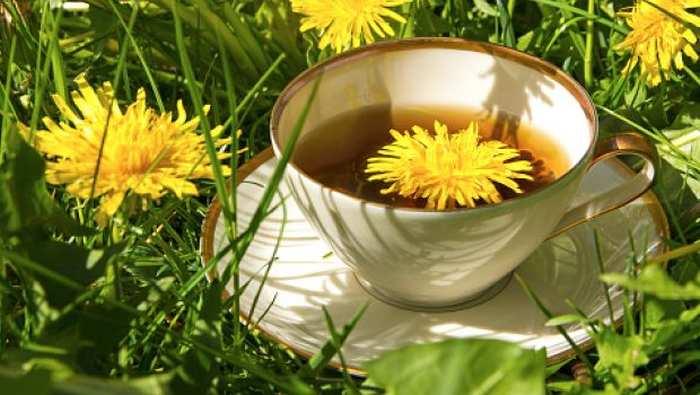 ceai din radacina de papadie