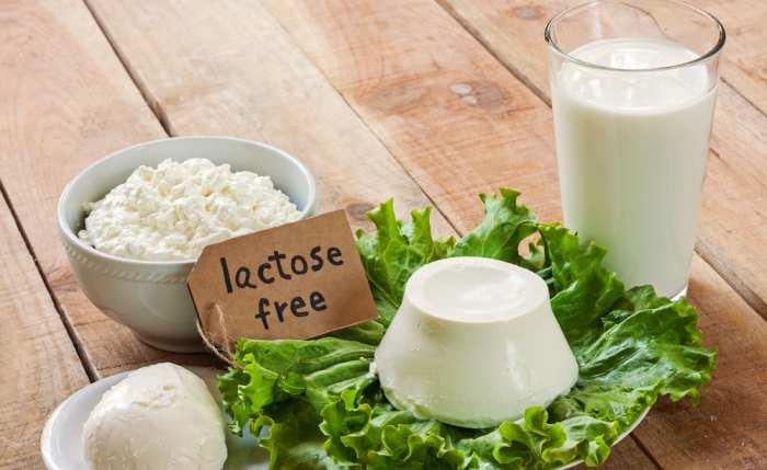 intoleranta la lactoza alimente