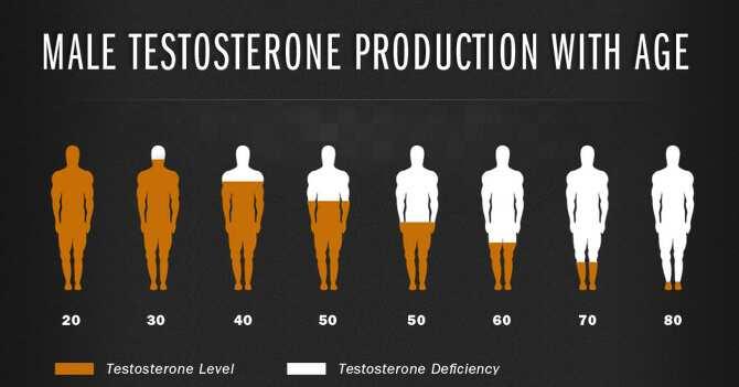 testosteron barbati varsta