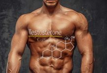 totul despre testosteron