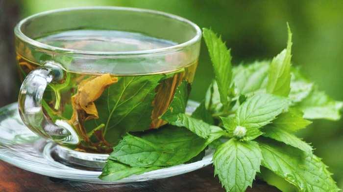 ceai de menta beneficii proprietati