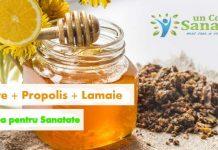 miere cu propolis si lamaie pentru imunitate