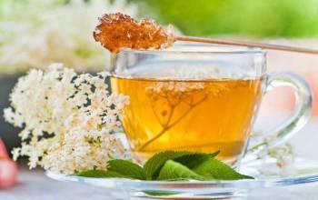 ceaiul de soc slabeste rapid)